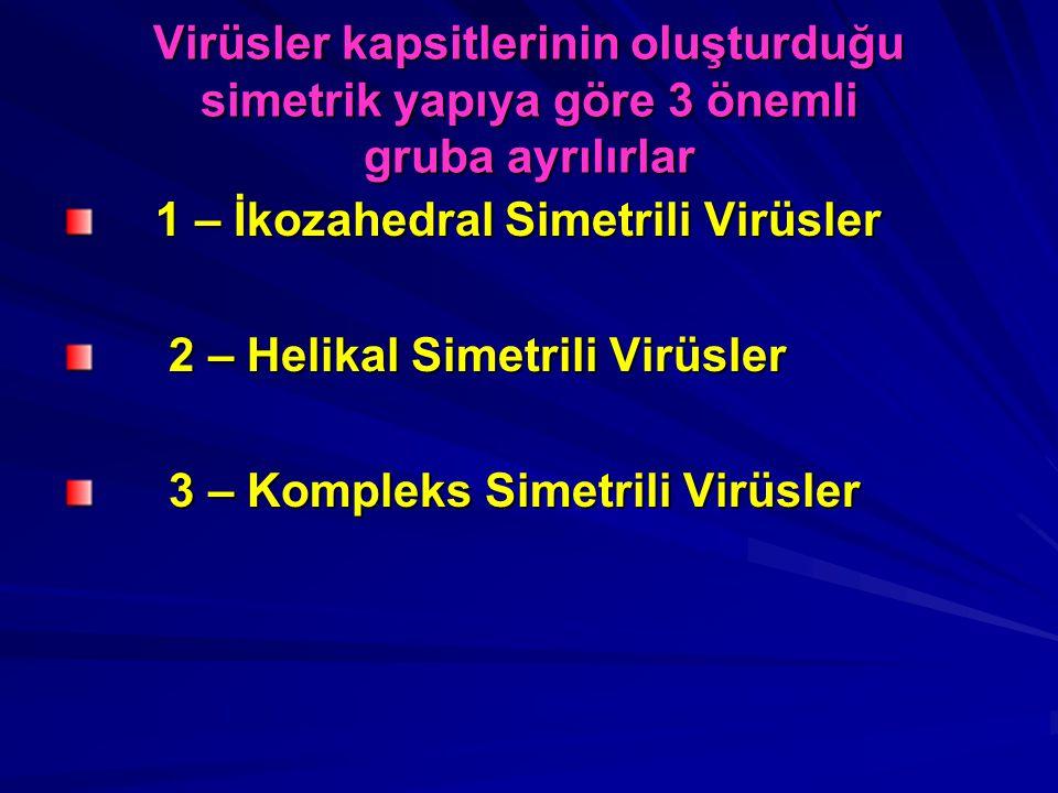 Virüsler kapsitlerinin oluşturduğu simetrik yapıya göre 3 önemli gruba ayrılırlar 1 – İkozahedral Simetrili Virüsler 1 – İkozahedral Simetrili Virüsle
