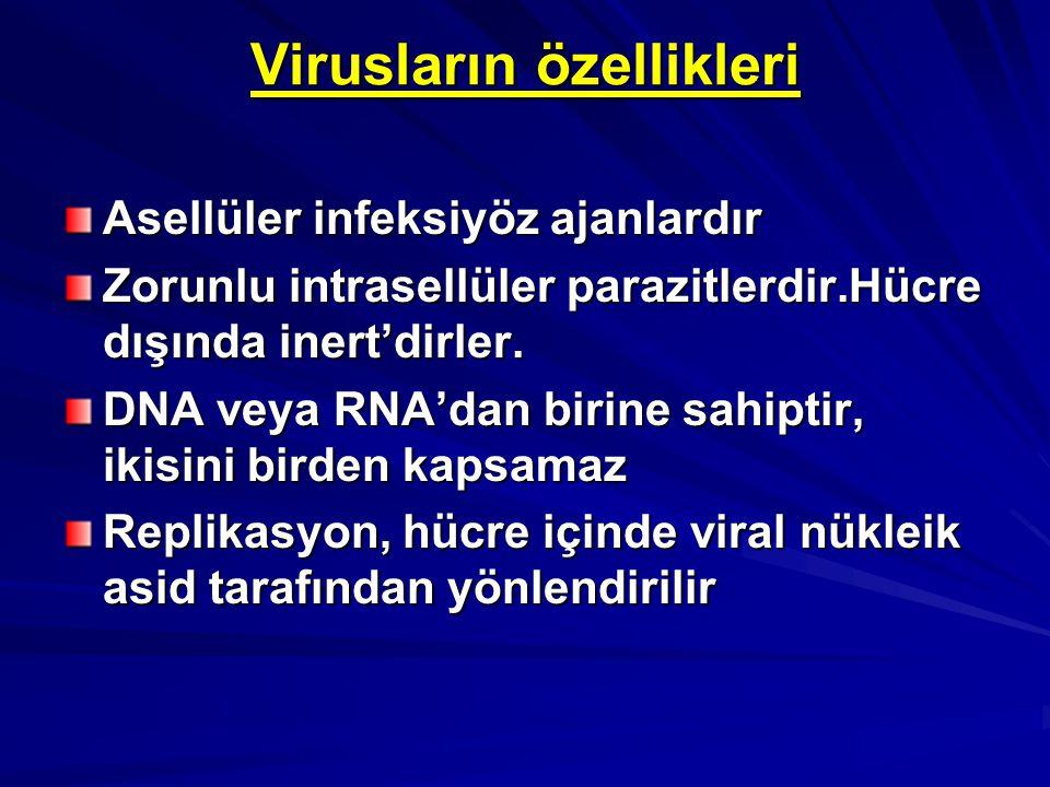 Virusların özellikleri Asellüler infeksiyöz ajanlardır Zorunlu intrasellüler parazitlerdir.Hücre dışında inert'dirler. DNA veya RNA'dan birine sahipti