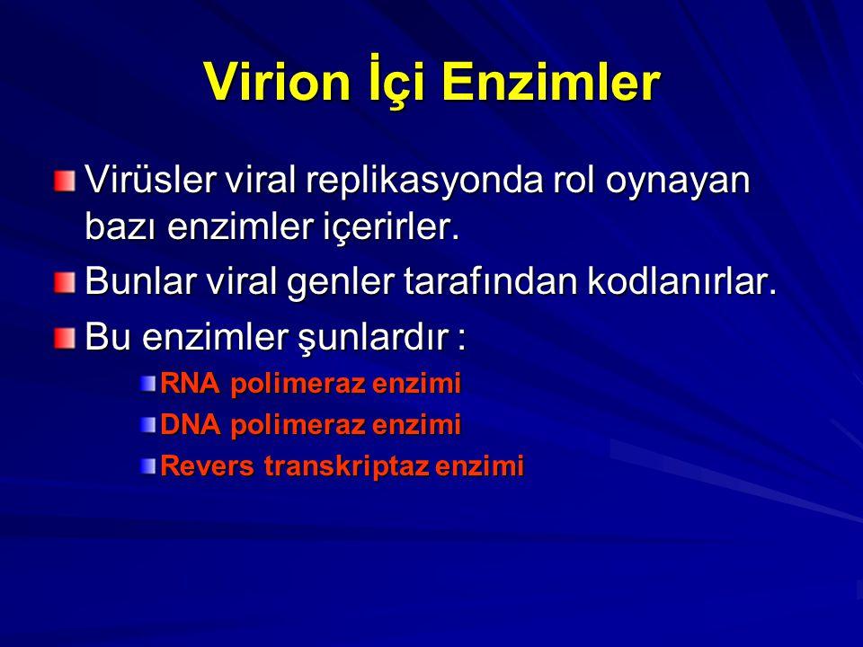 Virion İçi Enzimler Virüsler viral replikasyonda rol oynayan bazı enzimler içerirler. Bunlar viral genler tarafından kodlanırlar. Bu enzimler şunlardı