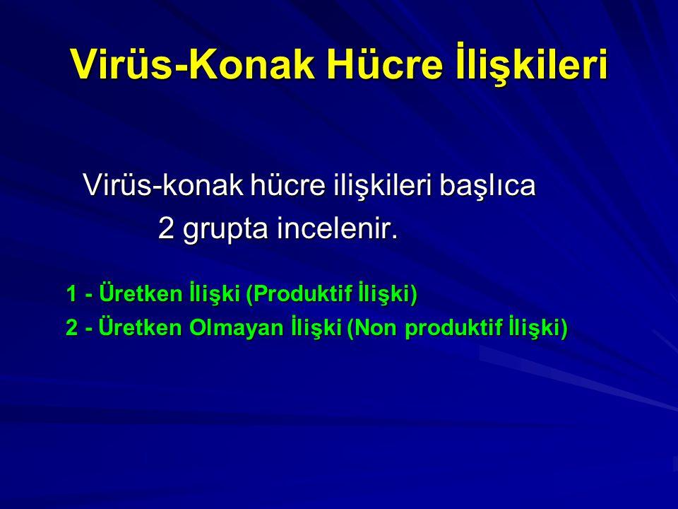 Virüs-Konak Hücre İlişkileri Virüs-konak hücre ilişkileri başlıca Virüs-konak hücre ilişkileri başlıca 2 grupta incelenir. 2 grupta incelenir. 1 - Üre