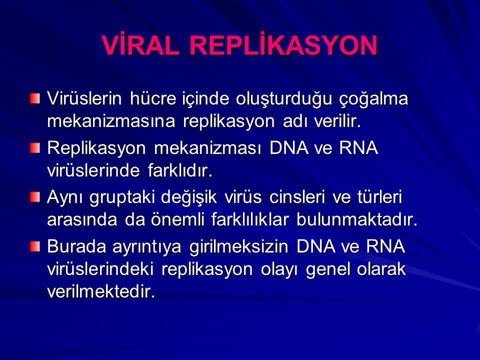 VİRAL REPLİKASYON Virüslerin hücre içinde oluşturduğu çoğalma mekanizmasına replikasyon adı verilir. Replikasyon mekanizması DNA ve RNA virüslerinde f
