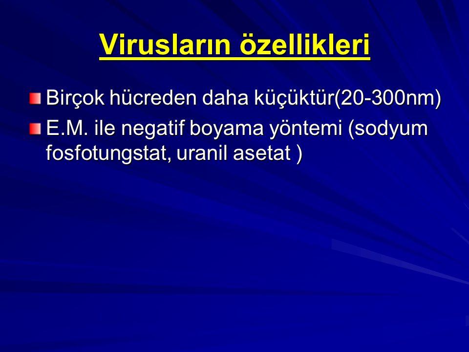 RNA Virüs Ailelerinin Genel Özellikleri Virüs Ailesi Büyüklük Nükleik Asit Tipi Kapsid Simetrisi Zarf Özelliği Picornaviridae 20-30 nm Tek İplikcik İkozahedral Zarfsız Orthomyxoviridae 80-120 nm Tek İplikcik Helikal Zarflı Paramyxoviridae 150-300 nm Tek İplikcik Helikal Zarflı Togaviridae 50-70 nm Tek İplikcikli İkozahedral Zarflı Rhabdoviridae 75-180 nm Tek İplikcik Helikal Zarflı Retroviridae 90-120 nm Tek İplikcik Kompleks Zarflı Filoviridae 80-4000 nm Tek İplikcik Helikal Zarflı Reoviridae 60-80 nm Çift İplikcik İkozahedral Zarfsız Arenaviridae 80-130 nm Tek İplikcikli Kompleks Zarflı Bunyaviridae 90-100 nm Tek İplikcik Helikal Zarflı Coronaviridae 80-160 nm Tek İplikcik Kompleks Zarflı Flaviviridae 45-50 nm Tek İplikcik Kompleks Zarflı Caliciviridae 35-40 nm Tek İplikcik İkozahedral Zarflı
