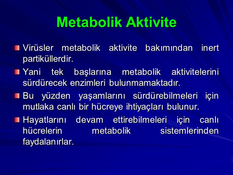 Metabolik Aktivite Virüsler metabolik aktivite bakımından inert partiküllerdir. Yani tek başlarına metabolik aktivitelerini sürdürecek enzimleri bulun