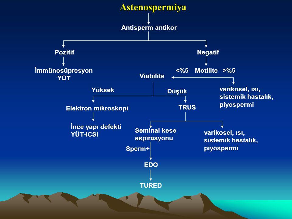 Antisperm antikor Pozitif İmmünosüpresyon YÜT Negatif Motilite <%5 Viabilite >%5 varikosel, ısı, sistemik hastalık, piyospermi Yüksek Düşük Elektron m