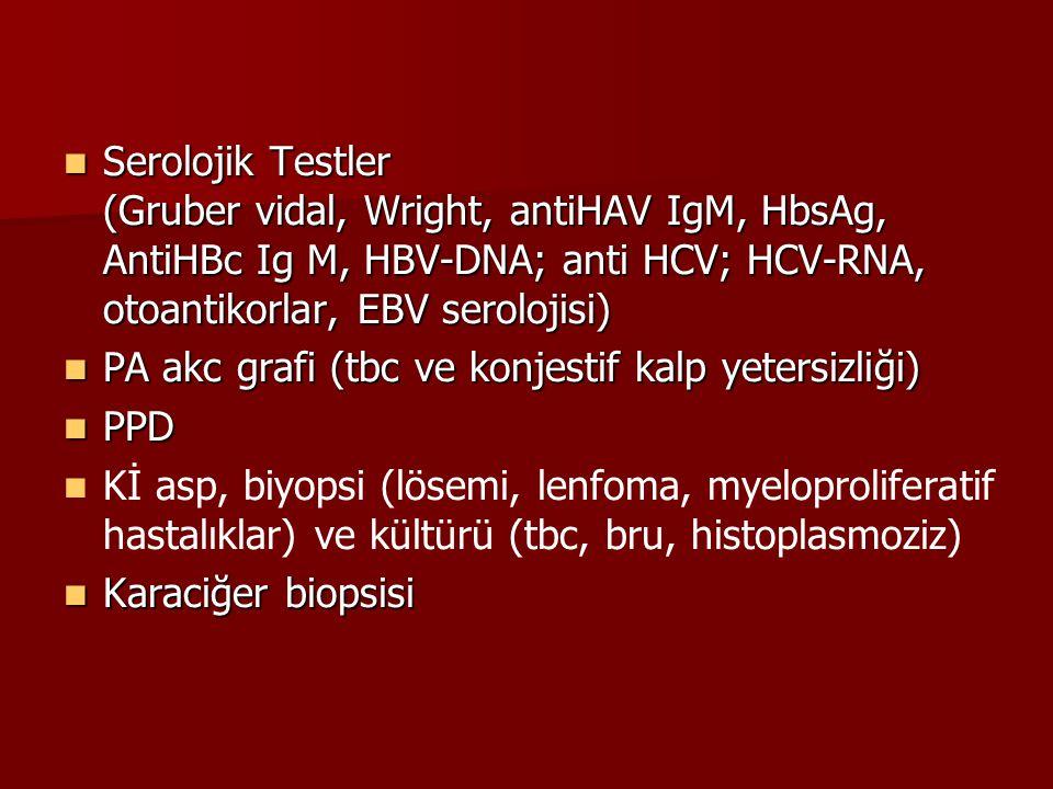 Serolojik Testler (Gruber vidal, Wright, antiHAV IgM, HbsAg, AntiHBc Ig M, HBV-DNA; anti HCV; HCV-RNA, otoantikorlar, EBV serolojisi) Serolojik Testle