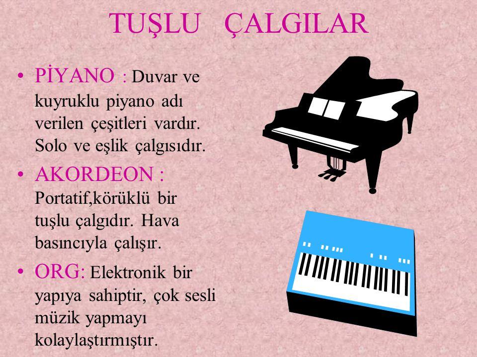 TUŞLU ÇALGILAR PİYANO : Duvar ve kuyruklu piyano adı verilen çeşitleri vardır. Solo ve eşlik çalgısıdır. AKORDEON : Portatif,körüklü bir tuşlu çalgıdı