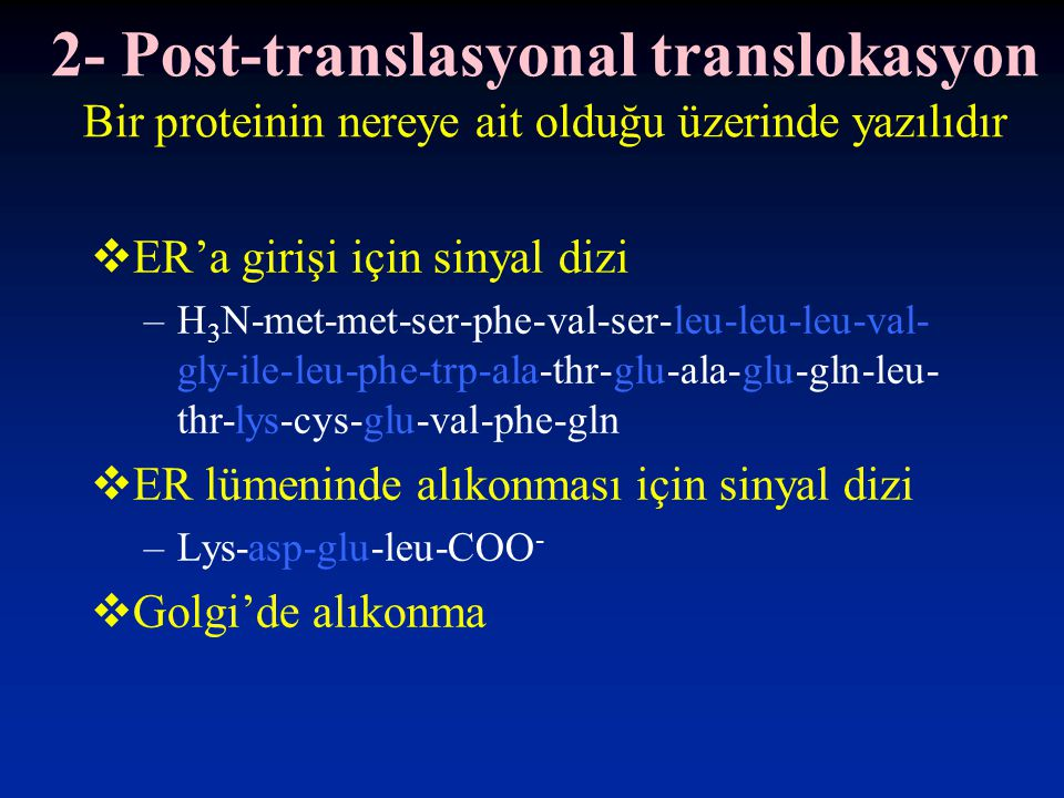 2- Post-translasyonal translokasyon Bir proteinin nereye ait olduğu üzerinde yazılıdır  ER'a girişi için sinyal dizi –H 3 N-met-met-ser-phe-val-ser-leu-leu-leu-val- gly-ile-leu-phe-trp-ala-thr-glu-ala-glu-gln-leu- thr-lys-cys-glu-val-phe-gln  ER lümeninde alıkonması için sinyal dizi –Lys-asp-glu-leu-COO -  Golgi'de alıkonma
