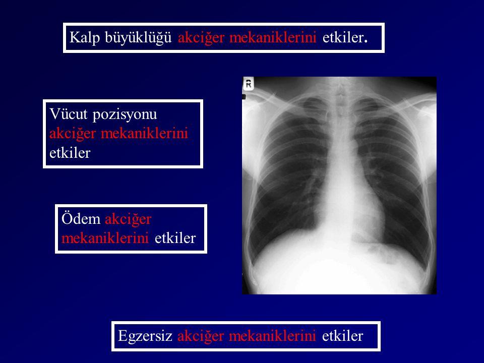Kalp büyüklüğü akciğer mekaniklerini etkiler. Vücut pozisyonu akciğer mekaniklerini etkiler Egzersiz akciğer mekaniklerini etkiler Ödem akciğer mekani
