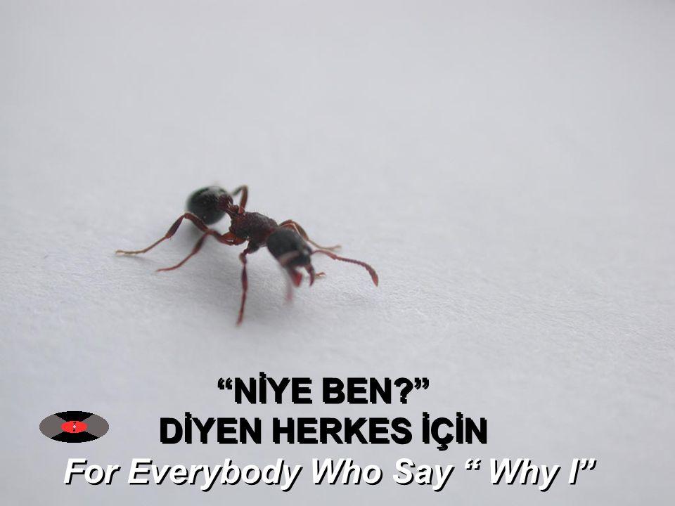 NİYE BEN? DİYEN HERKES İÇİN For Everybody Who Say Why I NİYE BEN? DİYEN HERKES İÇİN For Everybody Who Say Why I
