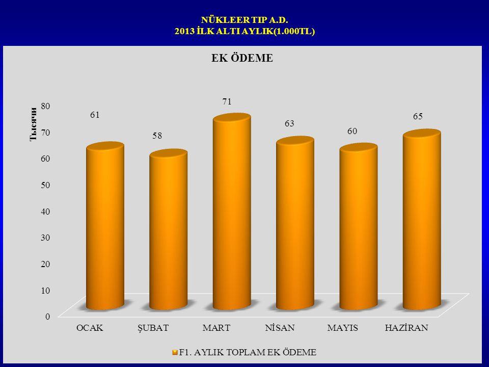 NÜKLEER TIP A.D. 2013 İLK ALTI AYLIK(1.000TL)