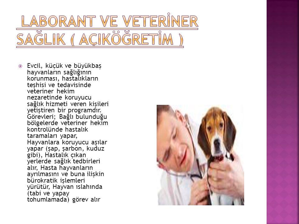  Evcil, küçük ve büyükbaş hayvanların sağlığının korunması, hastalıkların teşhisi ve tedavisinde veteriner hekim nezaretinde koruyucu sağlık hizmeti veren kişileri yetiştiren bir programdır.