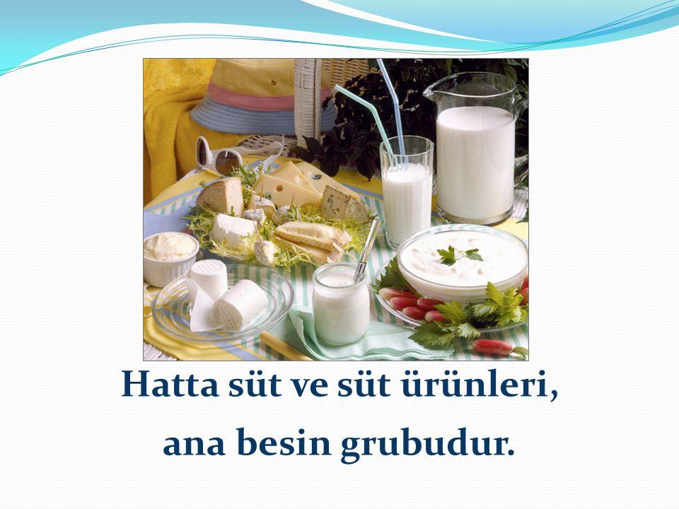 Hatta süt ve süt ürünleri, ana besin grubudur.