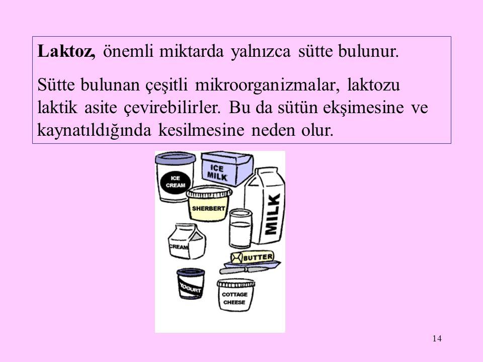 14 Laktoz, önemli miktarda yalnızca sütte bulunur. Sütte bulunan çeşitli mikroorganizmalar, laktozu laktik asite çevirebilirler. Bu da sütün ekşimesin