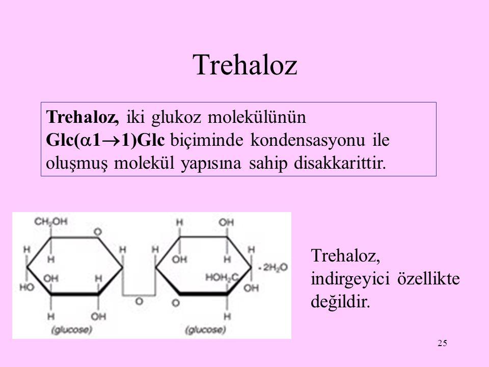 25 Trehaloz Trehaloz, iki glukoz molekülünün Glc(  1  1)Glc biçiminde kondensasyonu ile oluşmuş molekül yapısına sahip disakkarittir. Trehaloz, indi