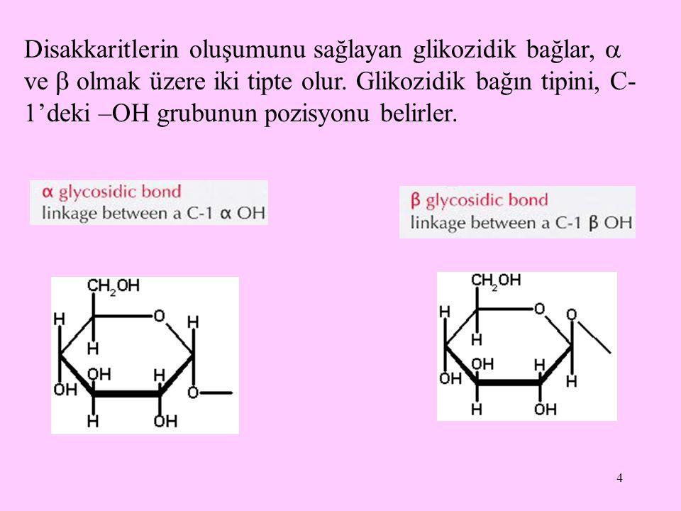 4 Disakkaritlerin oluşumunu sağlayan glikozidik bağlar,  ve  olmak üzere iki tipte olur. Glikozidik bağın tipini, C- 1'deki –OH grubunun pozisyonu b