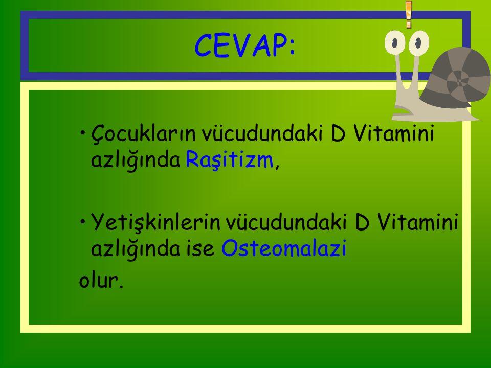 SORU 3 Vücudumuzdaki D vitamini azsa ne olur?
