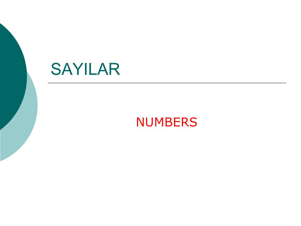 SAYILAR NUMBERS