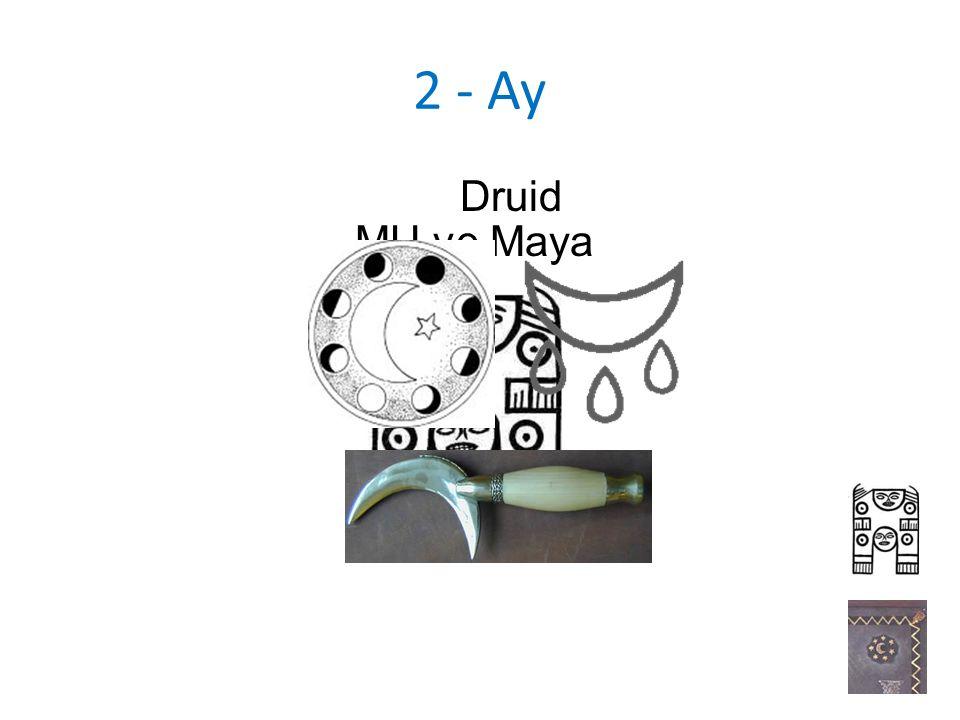 2 - Ay MU ve Maya Druid