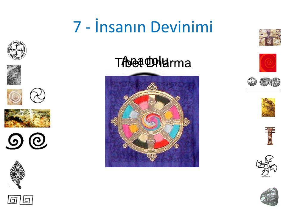 7 - İnsanın Devinimi Anadolu Tibet Dharma