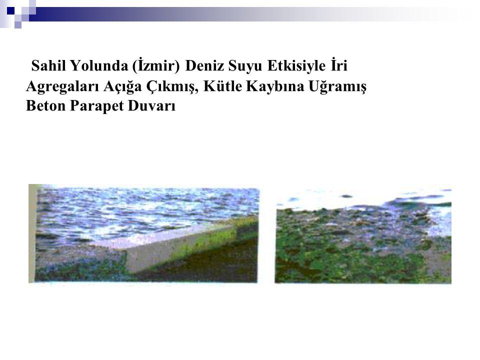 Sahil Yolunda (İzmir) Deniz Suyu Etkisiyle İri Agregaları Açığa Çıkmış, Kütle Kaybına Uğramış Beton Parapet Duvarı
