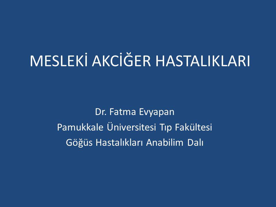 MESLEKİ AKCİĞER HASTALIKLARI Dr. Fatma Evyapan Pamukkale Üniversitesi Tıp Fakültesi Göğüs Hastalıkları Anabilim Dalı