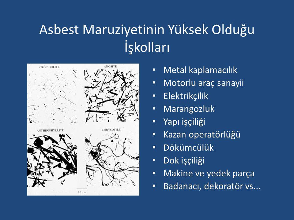 Asbest Maruziyetinin Yüksek Olduğu İşkolları Metal kaplamacılık Motorlu araç sanayii Elektrikçilik Marangozluk Yapı işçiliği Kazan operatörlüğü Dökümc