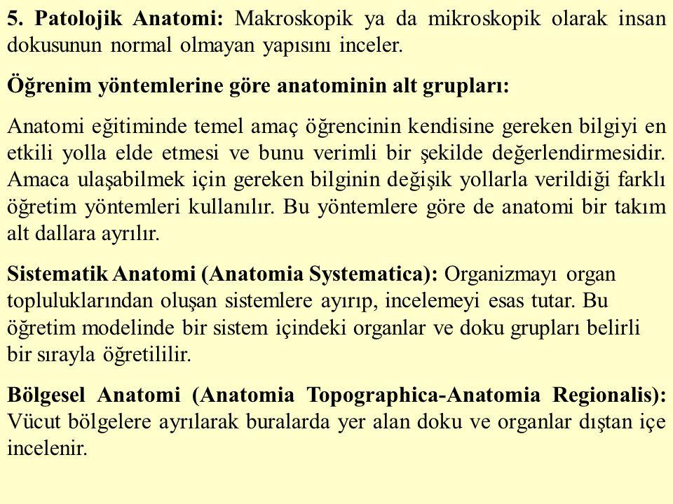 5. Patolojik Anatomi: Makroskopik ya da mikroskopik olarak insan dokusunun normal olmayan yapısını inceler. Öğrenim yöntemlerine göre anatominin alt g