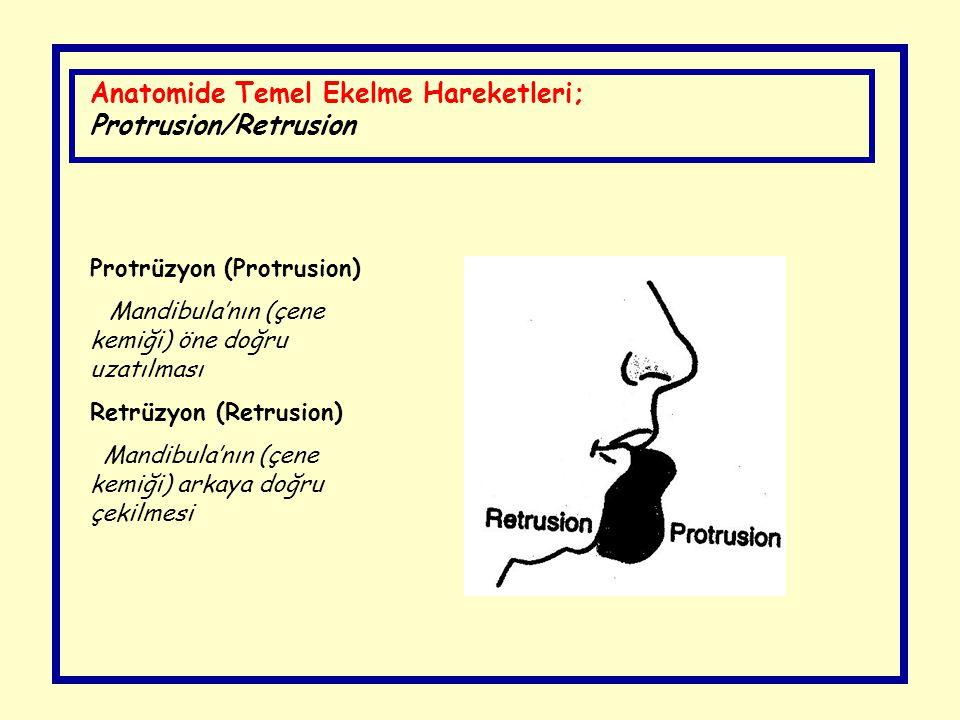Anatomide Temel Ekelme Hareketleri; Protrusion/Retrusion Protrüzyon (Protrusion) Mandibula'nın (çene kemiği) öne doğru uzatılması Retrüzyon (Retrusion