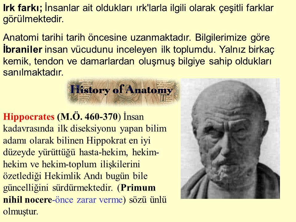 Aristotle (M.Ö.384-322) Anatome kelimesini kullanan ilk bilim adamıdır.