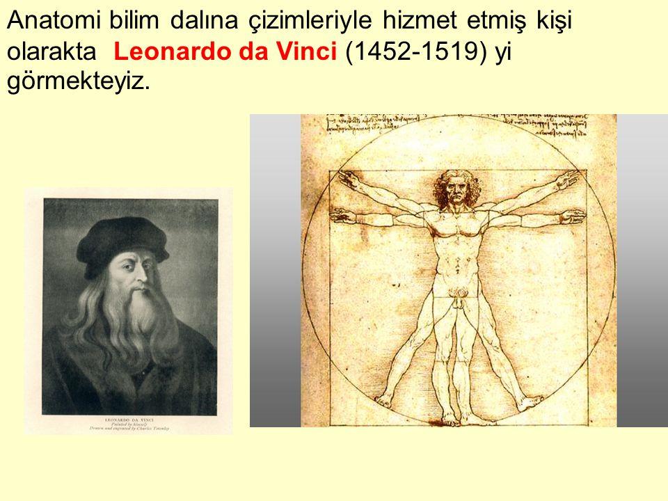 Anatomi bilim dalına çizimleriyle hizmet etmiş kişi olarakta Leonardo da Vinci (1452-1519) yi görmekteyiz.