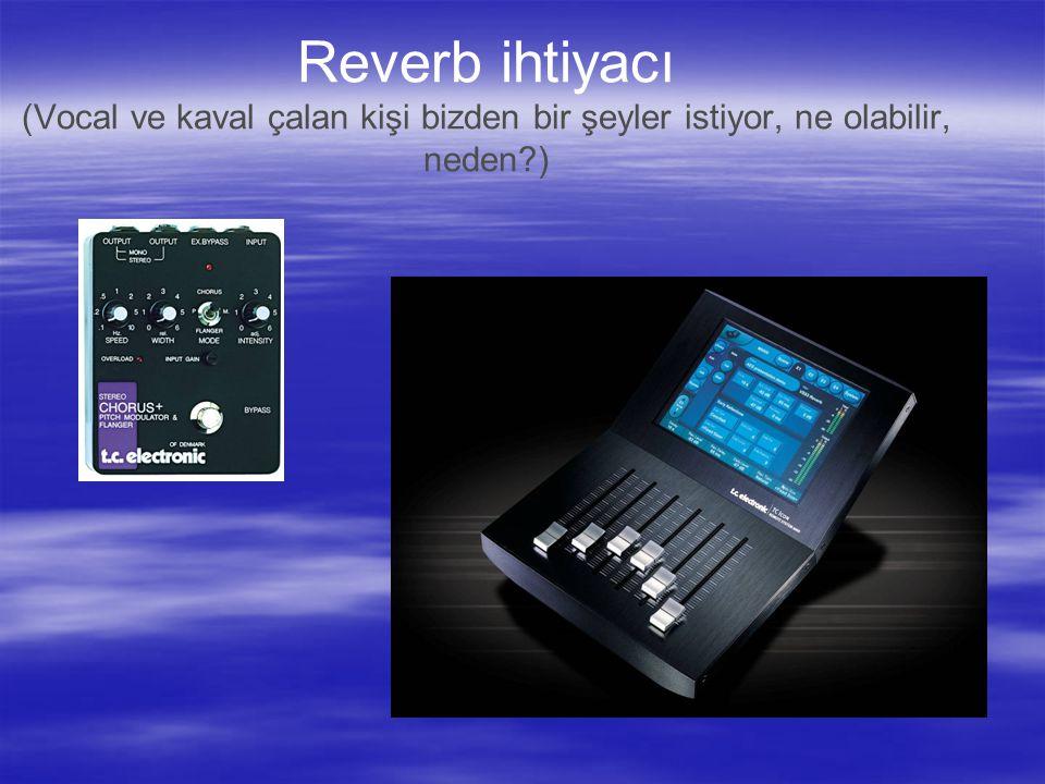 Reverb ihtiyacı (Vocal ve kaval çalan kişi bizden bir şeyler istiyor, ne olabilir, neden?)