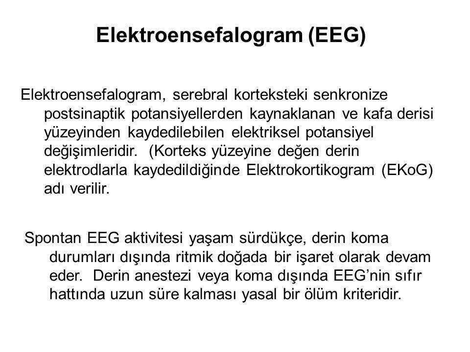 Elektroensefalogram (EEG) Elektroensefalogram, serebral korteksteki senkronize postsinaptik potansiyellerden kaynaklanan ve kafa derisi yüzeyinden kaydedilebilen elektriksel potansiyel değişimleridir.