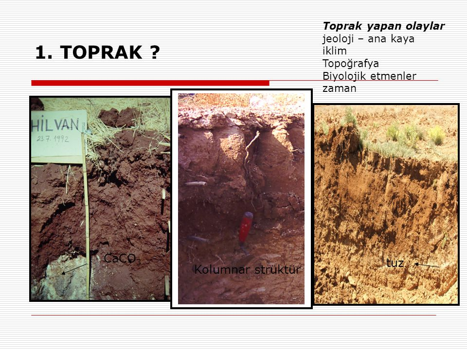 1. TOPRAK ? Toprak yapan olaylar jeoloji – ana kaya iklim Topoğrafya Biyolojik etmenler zaman CaCO 3 Kolumnar strüktür tuz
