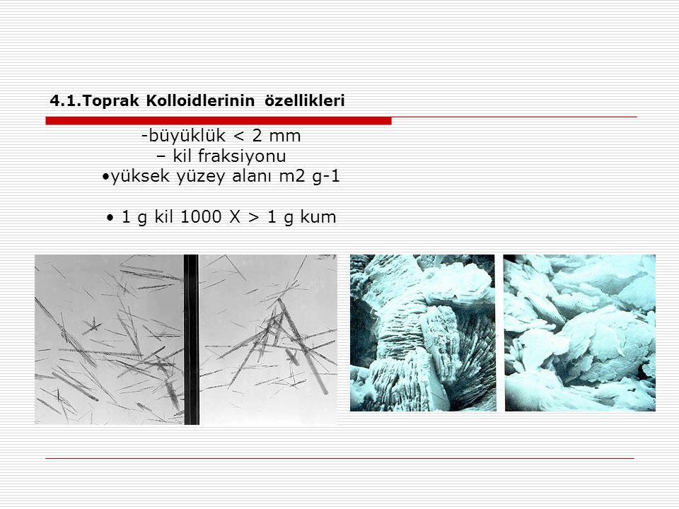 4.1.Toprak Kolloidlerinin özellikleri -büyüklük < 2 mm – kil fraksiyonu yüksek yüzey alanı m2 g-1 1 g kil 1000 X > 1 g kum