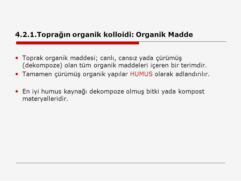 4.2.1.Toprağın organik kolloidi: Organik Madde Toprak organik maddesi; canlı, cansız yada çürümüş (dekompoze) olan tüm organik maddeleri içeren bir te