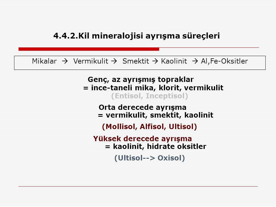 Genç, az ayrışmış topraklar = ince-taneli mika, klorit, vermikulit (Entisol, Inceptisol) Orta derecede ayrışma = vermikulit, smektit, kaolinit (Mollis