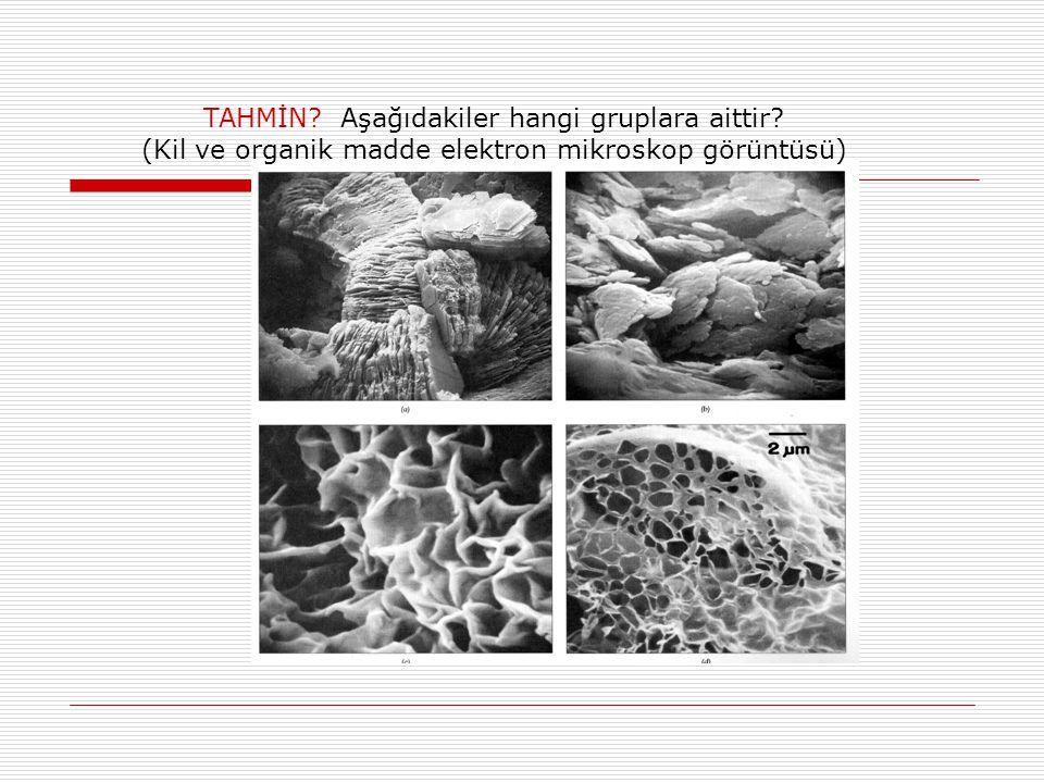 TAHMİN? Aşağıdakiler hangi gruplara aittir? (Kil ve organik madde elektron mikroskop görüntüsü)