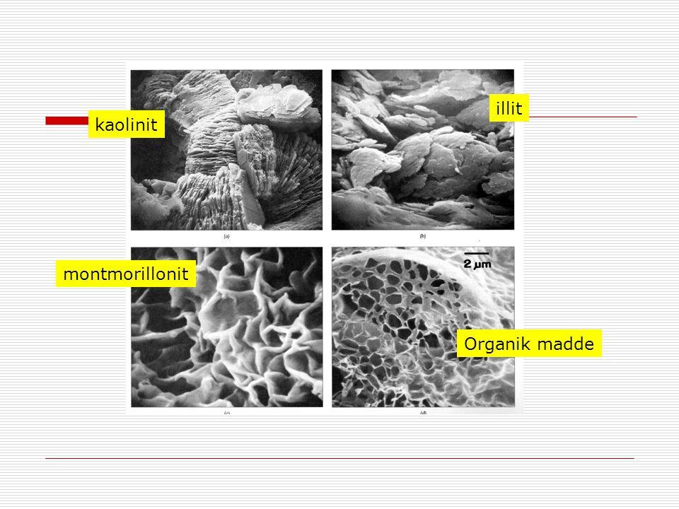 kaolinit illit montmorillonit Organik madde