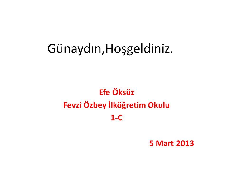 Günaydın,Hoşgeldiniz. Efe Öksüz Fevzi Özbey İlköğretim Okulu 1-C 5 Mart 2013