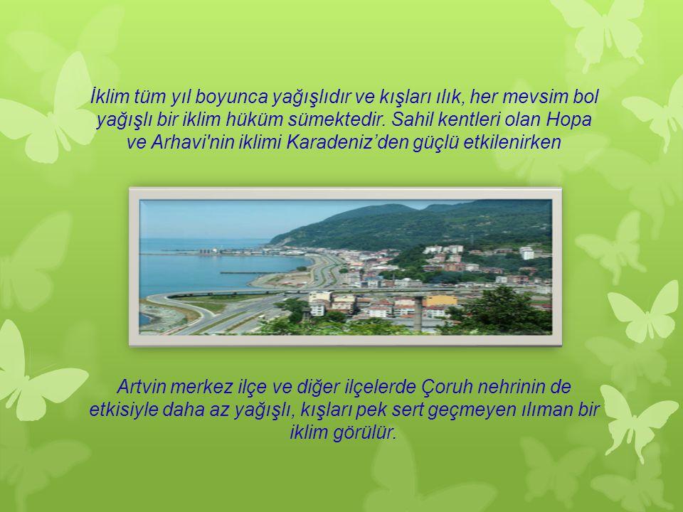 Doğu Karadeniz Bölümü'nde Türkiye'nin Gürcistan'la olan sınırında yer alan Artvin ilinin merkezi olan şehirdir. Dağlık bir alanda Çoruh vadisinin sol