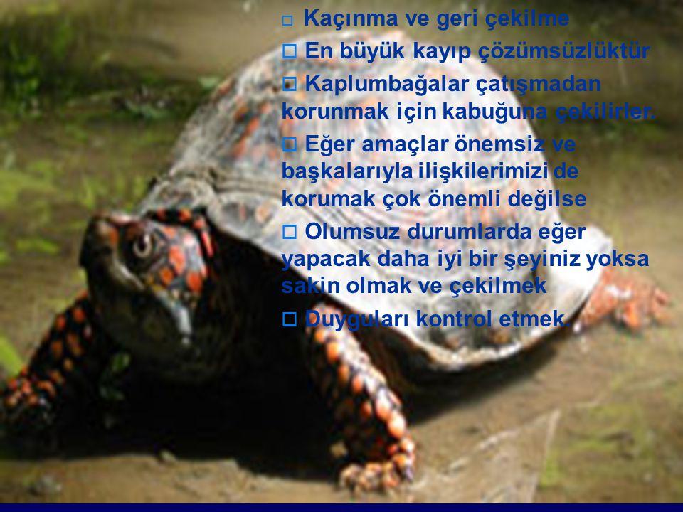  Kaçınma ve geri çekilme  En büyük kayıp çözümsüzlüktür  Kaplumbağalar çatışmadan korunmak için kabuğuna çekilirler.  Eğer amaçlar önemsiz ve başk