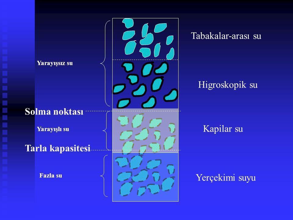 Tabakalar-arası su Higroskopik su Kapilar su Yerçekimi suyu Solma noktası Tarla kapasitesi Yarayışlı su Fazla su Yarayışsız su