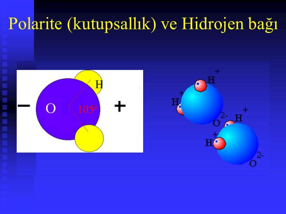 Polarite (kutupsallık) ve Hidrojen bağı