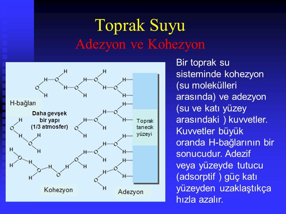 Bir toprak su sisteminde kohezyon (su molekülleri arasında) ve adezyon (su ve katı yüzey arasındaki ) kuvvetler.