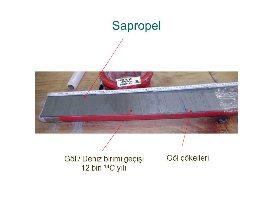 Sapropel Göl / Deniz birimi geçişi 12 bin 14 C yılı Göl çökelleri