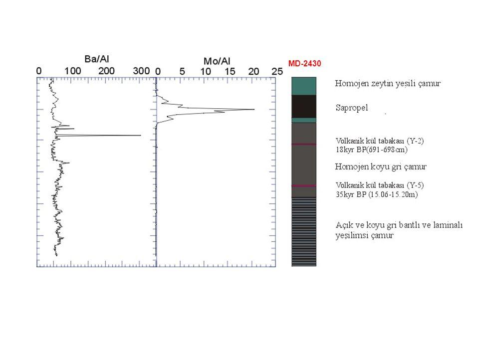 Sapropel suboxic-dysoxic koşullarda çökelmiş ve bu koşullar sapropel çökeliminden sonra da devam etmiş