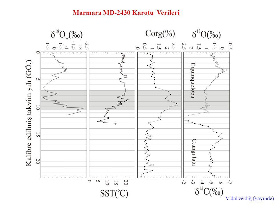 Marmara MD-2430 Karotu Verileri Vidal ve diğ.(yayında)