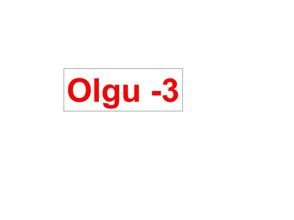 Olgu -3