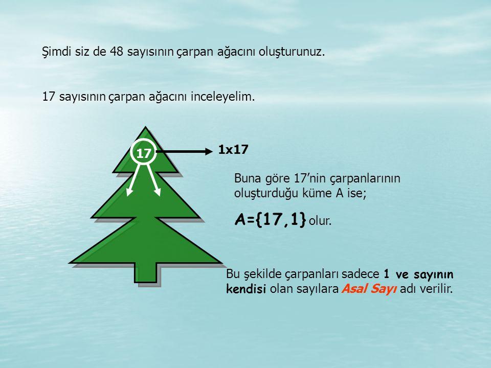 Şimdi siz de 48 sayısının çarpan ağacını oluşturunuz.