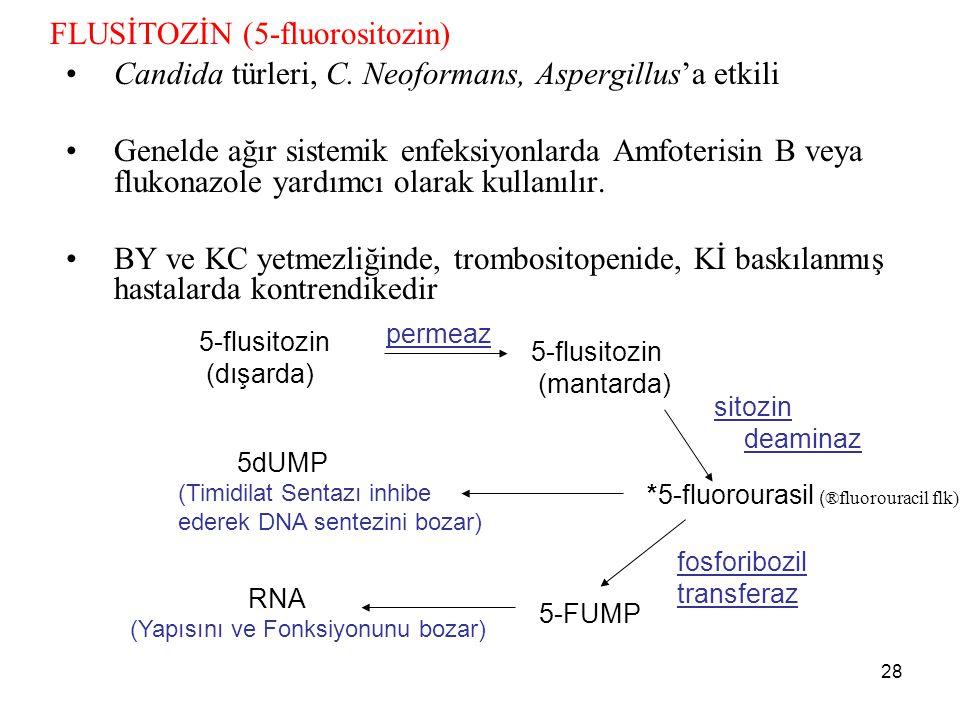 28 FLUSİTOZİN (5-fluorositozin) Candida türleri, C. Neoformans, Aspergillus'a etkili Genelde ağır sistemik enfeksiyonlarda Amfoterisin B veya flukonaz